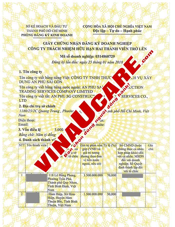 Mẫu giấy phép kinh doanh công ty TNHH hai thành viên trở lên (Ảnh VinaUCare)
