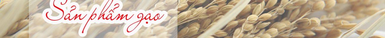 Chứng nhận y tế cho sản phẩm gạo