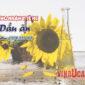Chứng nhận y tế HC dầu ăn Vinaucare